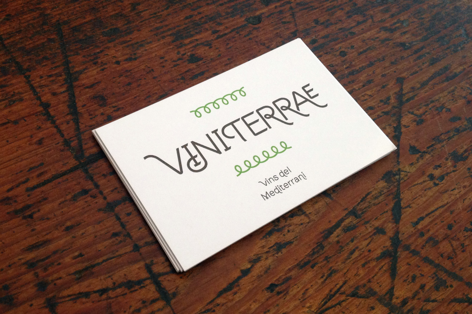 business card ViniTerrae