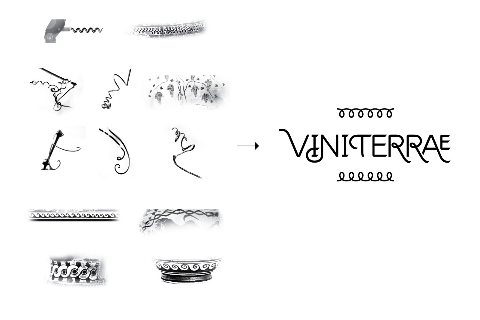 Logo Viniterrae in progress