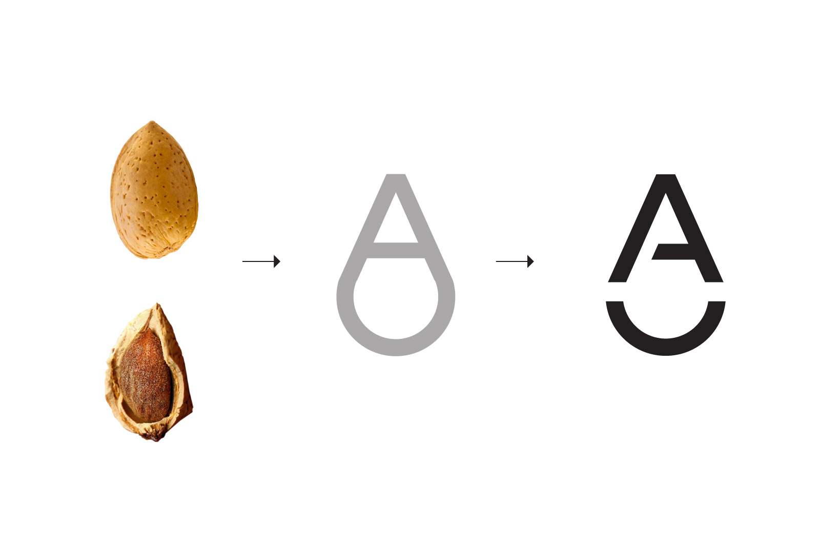 Building the almond logo