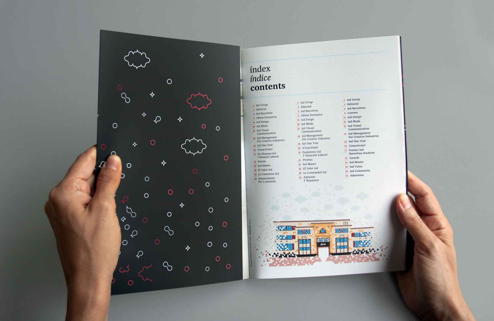 IED-brochure2012-1