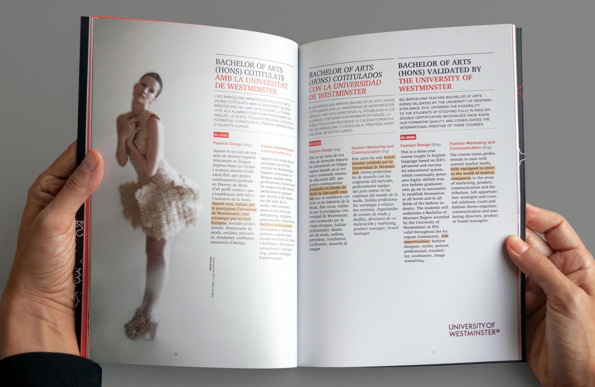 IED-brochure2012-12