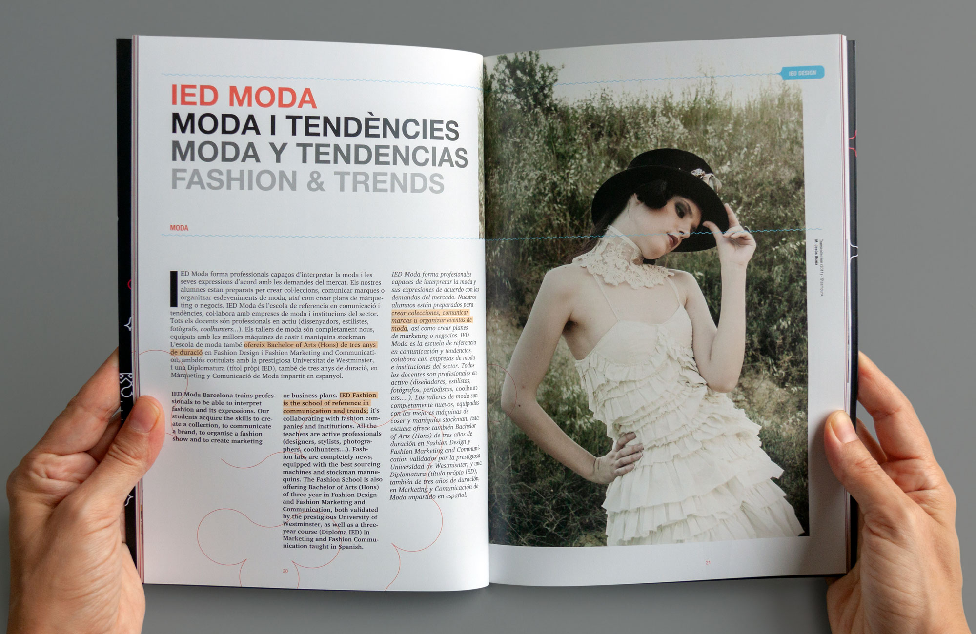 IED-brochure2012-9